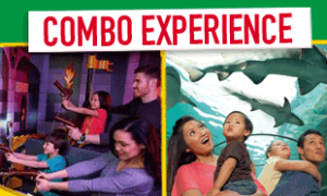 Get A Combo Ticket to LEGOLAND Grapevine for only $27.00 when you Book Online. 2 Attractions for the price of 1